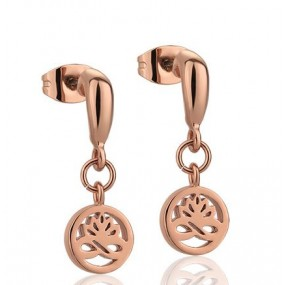 Stud Earrings Clear Rose Gold Plate Jewellery / Watches